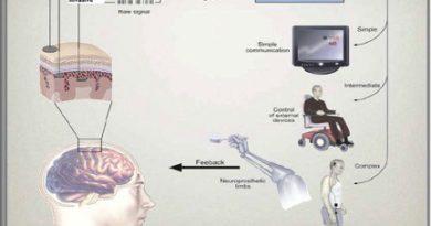 bcı brain computer